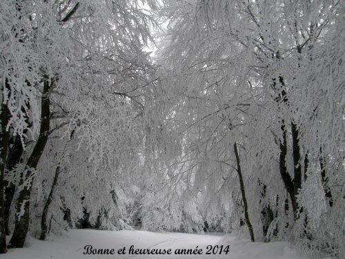Pilat sous la neige