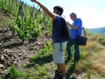Balades en Vignes 2015 21